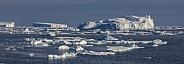 Weddell Sea - Antarctica