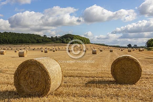 Farmland at harvest time - England