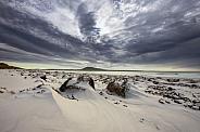Falkland Islands - Islas Malvinas