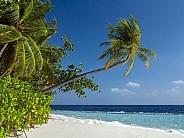 Maldives - Indian Ocean