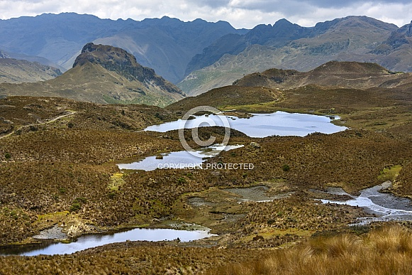 El Cajas National Park - Ecuador