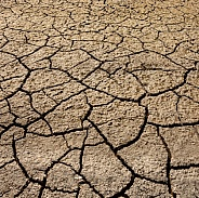 Drought - Dry, Cracked Earth - Namibia