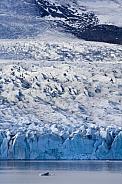 Fjallsjokull Glacier - Iceland