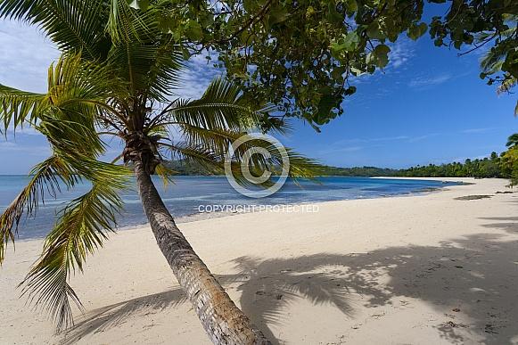 Fiji - South Pacific