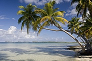 Tropical Lagoon - Cook Islands - South Pacific