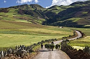 Countryside - Peru - South America