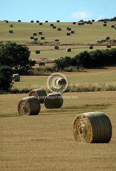 straw bails