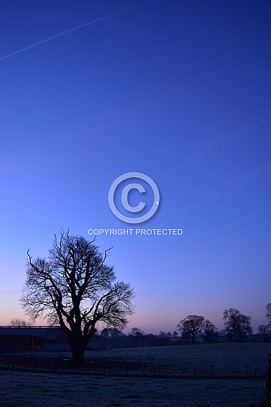 Moon across a frosty field