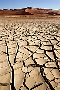 Dry cracked earth - Drought - Namibia