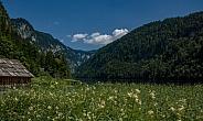 Austria ''Töplitzsee''