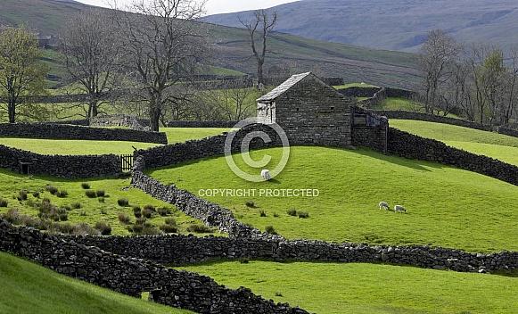 North Yorkshire Moors - England