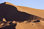 Giant sand dunes - Namib Desert - Namibia