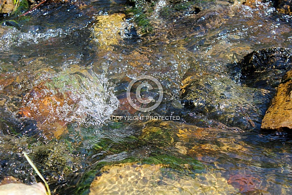 Clear Water With Rocks