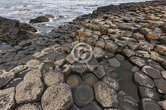 Giants Causeway - Northern Ireland