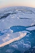 On Top of the World - Polar sea ice