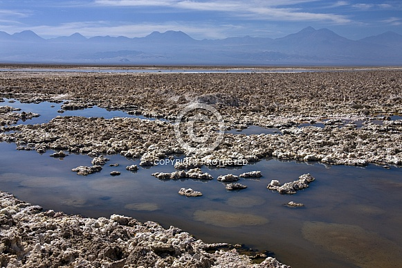 Brine pools - Atacama Desert