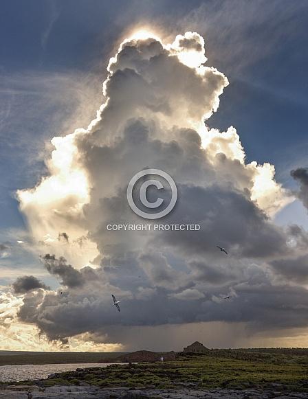 Cumulonimbus Thunder Cloud