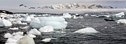 Aitcho islands - Antarctica