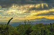 Near Sunset over Avra Valley